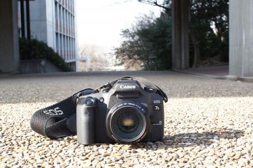 10 ちほちゃんカメラ.JPG