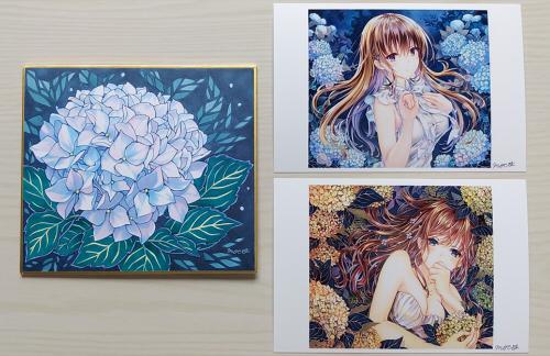 紫陽花 色紙絵 moco  アジサイ 花 イラスト 絵画 ポストカード