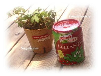 シュガーバインとトマトペースト