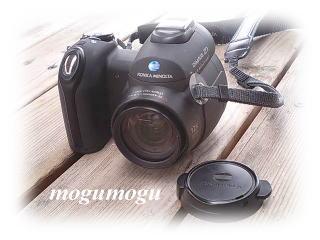 うちのカメラくん