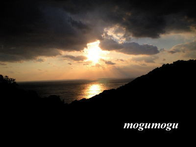 密柑山からの風景
