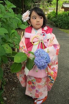 吉備津彦神社の753の撮影