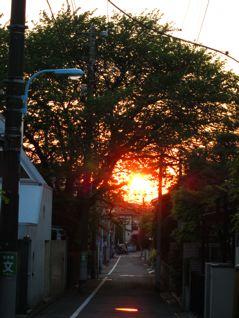 ご近所の夕日
