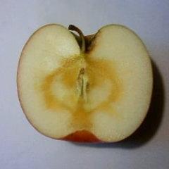 リンゴ切り口