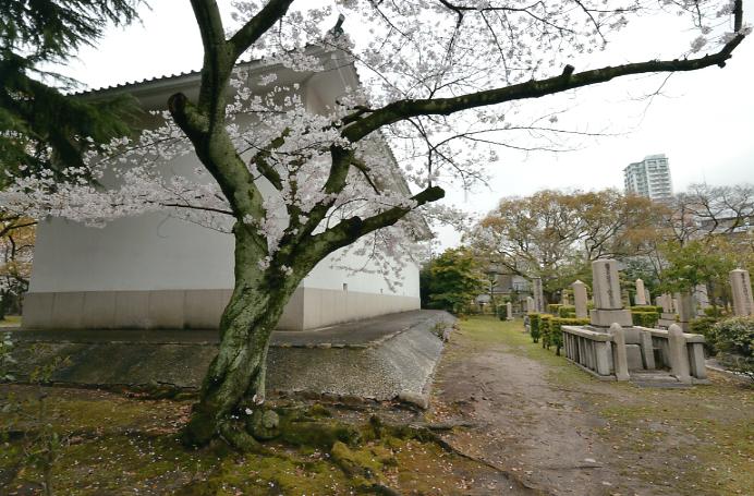 旧陸軍墓地