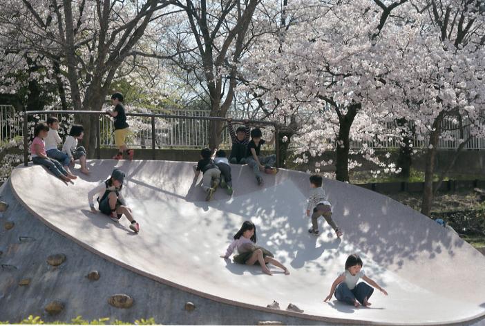 真田山公園の桜