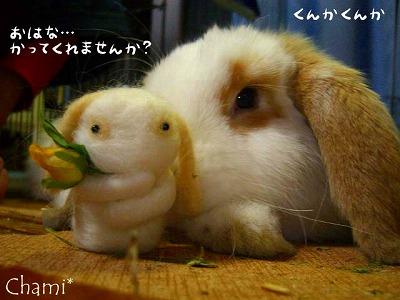 お花を〜〜♪