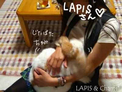 LAPISさんとちゃみ♪
