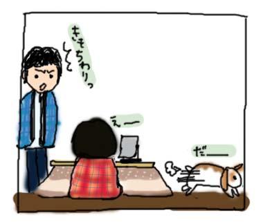 きゅうり4