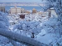 雪景色だー