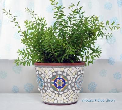 モザイクの植木鉢,チュニジアのタイル