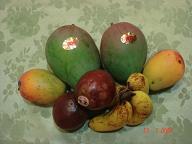 7.13 沖縄果物