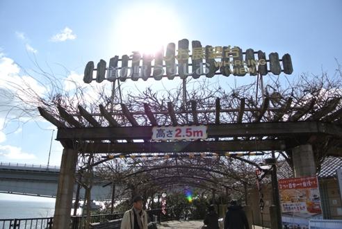鳴門大橋 (7).JPG