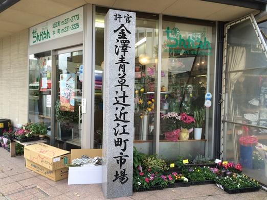 5近江 (1).JPG