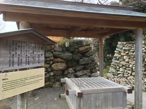 1浜松白 (2).jpg
