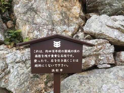 1浜松白 (4).jpg