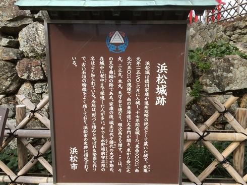 1浜松白 (8).jpg
