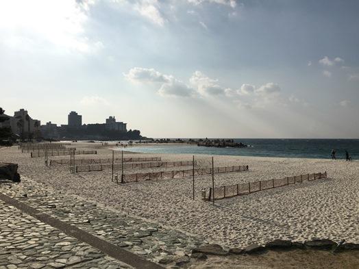 9白良浜 (2).jpg