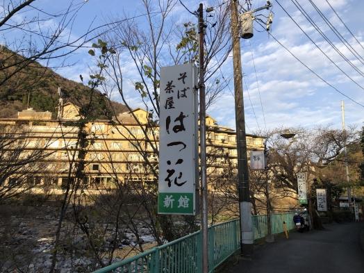 7はつ花 (3).JPG