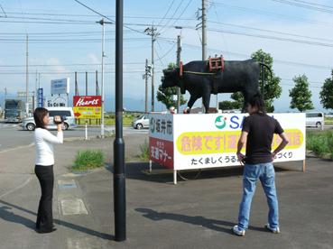 丸岡名物の牛さん
