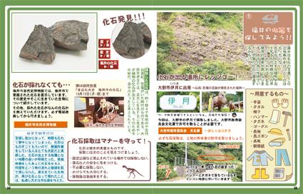 福井で化石発掘
