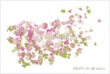 togosamashu/DM/写真面