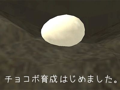 卵ちゃーん(*´д`*)ハァハァ