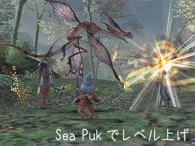 Sea Pukを殴る殴る殴るー!