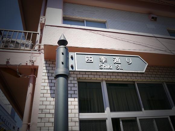 P1460312.jpg