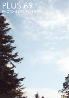 ハリネズミカメラ