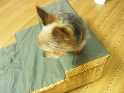 犬用階段 ペットスロープ 自作