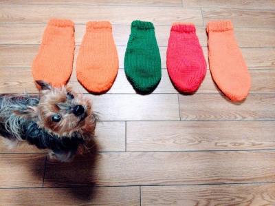 小さな犬のセーター 手編み 犬 セーター
