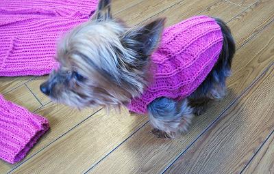 マノロ 内藤商事 フード付きカーディガン パーカー 小型犬セーター