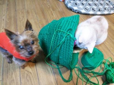 手編み 猫ハウス ドーム型 猫ちぐら 猫つぐら