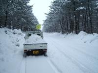 軽トラで雪運び