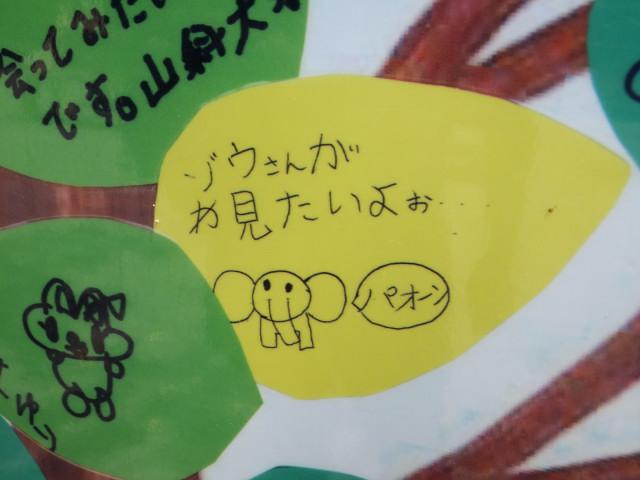2012-06-10_4456.JPG