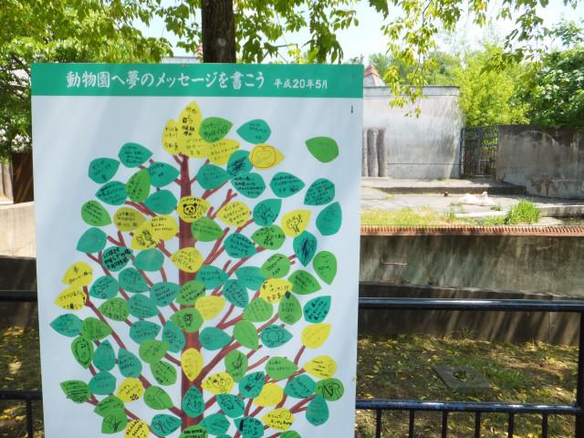 2012-06-10_4457.JPG