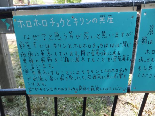 2012-06-10_4474.JPG