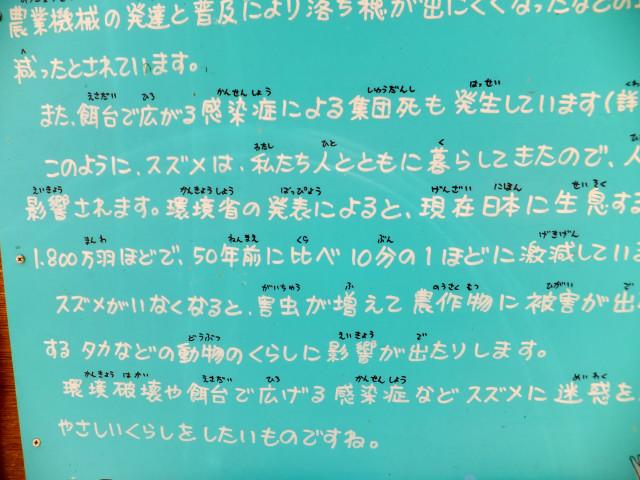 2012-06-10_4496.JPG