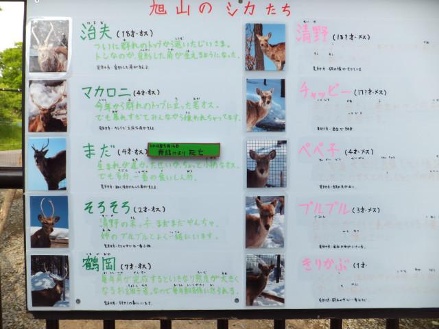 2012-06-10_4730.JPG