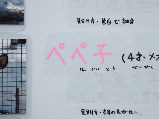 2012-06-10_4732.JPG