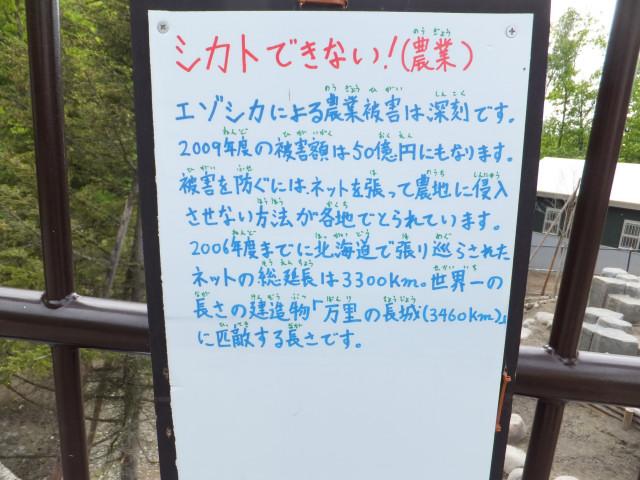 2012-06-10_4735.JPG