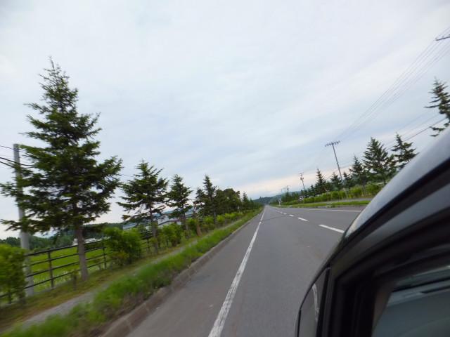 2012-06-10_4812.JPG