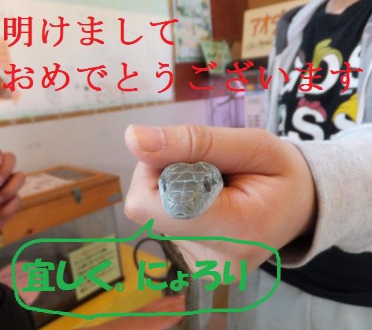 2012-06-10_4515.JPG
