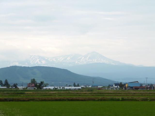 2012-06-10_4811.JPG