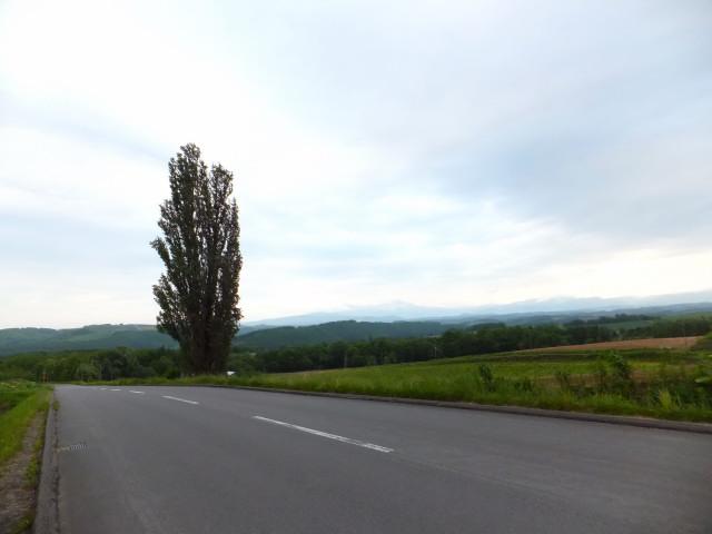 2012-06-10_4882.JPG