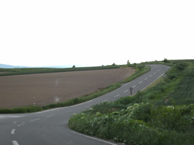 2012-06-10_4891.JPG