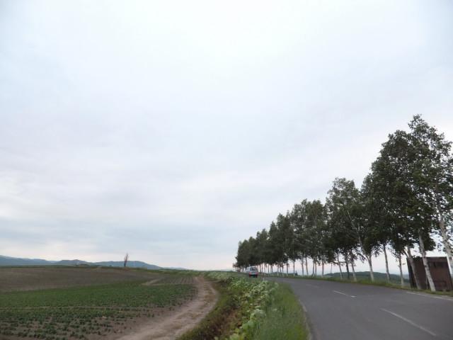 2012-06-10_4897.JPG