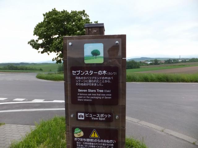 2012-06-10_4915.JPG