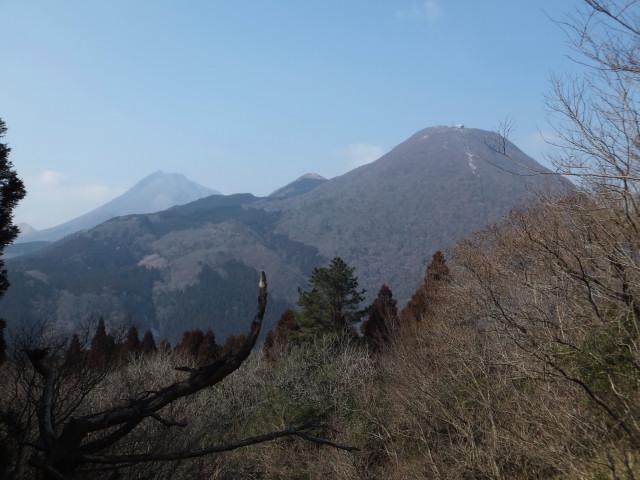 2013-02-01_10105.JPG